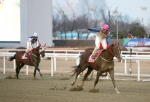'동반의강자'에 기승한 최범현 기수가 결승선을 통과하며 세레모니를 펼치고 있다.