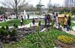 울산 동구 한마음회관 분수광장에서 열리는 봄꽃전시회.
