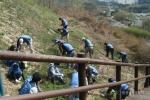 환경실천연합회 월드컵공원 위해식물제거활동 모습