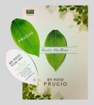 푸르지오 카탈로그 표지와 푸르지오 잎 (사진제공: 대우건설)