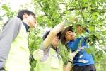 기술보증기금(이사장 김정국, 이하 '기보')은 지난 19일 봄철 농번기를 맞아 1사1촌 자매결연을 맺은 경남 밀양시 산내면을 찾아 농촌봉사활동을 펼쳤다.