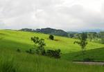 라오스 중북부 씨엥쿠앙 목초지로 우리나라 대관령과 비슷한 지형을 형성하고 있다. 축산업이 가능한 곳으로 최근 관심지역으로 떠오르고 있다. (사진제공: 아세안투데이)