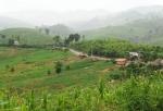 옥수수가 가장 많이 생산되는 북부 우돔싸이주(州)다. 아직도 개발의 여지가 많은 곳이다. (사진제공: 아세안투데이)