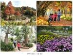 국화로 단풍이 어우러진 가을의 한택식물원 풍경입니다.