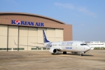 대한항공이 자사가 주도적으로 참여하고 있는 항공 동맹체 스카이팀 브랜드로 도색된 '스카이팀 홍보 항공기' 3호기를 운영한다.