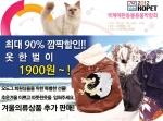 [애견용품 Hot Issue] 2012 KOPET에서 강아지 옷이 1900원!