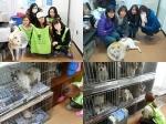 뷰티카페 '여우야'가 지난 21~22일 유기동물을 위한 사랑 나눔 봉사활동을 펼쳤다.