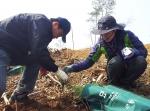 서울지방우정청(청장 이승재)은 4일 김포시 하성면 가금리에서 나무심기 행사를 펼쳤다.