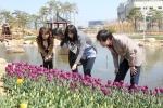뱃머리마을 꽃밭을 찾은 시민들이 봄을 알리는 꽃을보며 즐거워하고 있다.