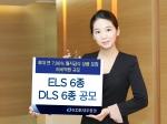 KDB대우증권은 ELS 6종 DLS 6종을 공모한다.