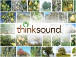 Thinksound