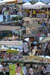 지난 6월 9일 서울광장에서 열렸던 대한민국 반려동물문화 대축제가 성황리에 막을 내렸다.
