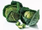 양배추는 우리생활에 가장 밀접한 식재료이면서도 건강에 좋은 효능을 두루 갖추고 있어 건강관리를 걱정하는 주부들에게 가장 인기좋은 식재료로 손꼽히고 있다.