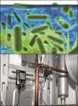 레지오넬라균과 testo 175-T3은 신속하고 정확하게 온도를 측정하고 기록해 건물 출입자 등이 레지오넬라균에 노출되는 위험으로부터 보호할 수 있도록 도와준다.