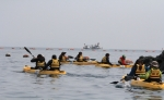 카약 체험코스를 따라가는 체험객들의 모습 (사진 출처:클럽요티)