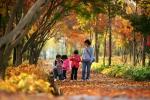 한 가족이 가을 단풍 나들이를 나왔다.