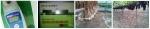 (사진 왼쪽부터) 마늘당도 40.4브릭스, 포도당도22.6~24브릭스, 마늘농장, 포도농장