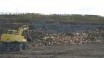 제주도 재선충 차단 위한 방제전략 및 베어낸 나무 재활용 방안을 수립해야 한다.