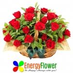 에너지플라워는 꽃을 일정금액 이상 구매하면 선물로 미국 10,000개 학교가 사용하는 미국 리딩교과서 1000권을 배울 수 있는 학습권과 책을 증정한다.