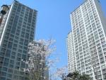 잠실청운부동산에 잠실엘스 아파트 109㎡(33평형) 전세물건이 의뢰되었다.