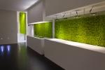 그린신드롬이 공간의 스타일을 살려주는 에코 솔루션, 모스월을 출시했다.