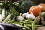 제철에 나는 채소나 과일을 많이 섭취하여 면역력을 증가시켜주는 것이 효과적인데, 봄철에 좋은 것으로는 봄동, 달래, 쑥, 냉이 등이 있다.