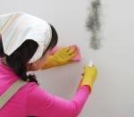무균정 곰팡이연구소의 도움으로 화장실 물때와 곰팡이 관리에 대하여 알아본다.