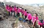 포항시가 지난 28일 덕수공원 일원에서 시민, 기업체, 유관단체, 공무원 등 1천여명이 참여한 가운데 2014 희망의 나무심기 행사를 가졌다.