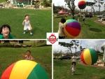 신나고 즐거운 놀이활동과 융합한 짐글리쉬 영어교육이 주목받고 있다.