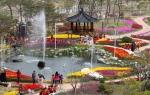 튤립꽃잔치 행사장을 찾은 시민들의 모습이다.