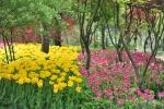 한택식물원, 봄꽃페스티발 개최