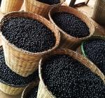 슈퍼푸드로 유명한 아사이베리의 인기가 급등하고 있다.
