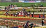 포항시 남구 상도동의 하수처리장 일원에는 4월 10일부터 뱃머리마을 튤립 꽃잔치가 열렸다.