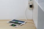 타거스가 애플 전용 모바일 충전기 2종을 출시했다.