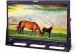 티브이로직 신제품 24.5인치 OLED 모니터 (모델명: LEM-250A)