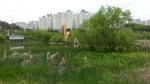 동백서해그랑블2차 호수공원에서 바라본 모습