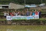 청산도(전남 완도군 청산면)에서 iCOOP생협과 함께하는 즐거운 청산도 구들장논학교가 개최되었다.