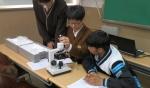 파키스탄에서 온 누리다문화학교 학생이 일반고교 학생들과 현미경으로 세포관찰 활동을 하고 있다. (출처: 누리다문화학교)