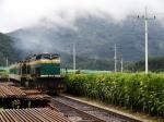 이병률 시인과 동행하는 끌림 여행은 정선선 꼬마열차(1칸짜리열차)를 타고 이동한다.