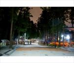 삼정더파크가 야간개장 워킹사파리를 선보이고 있다.