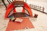 이스타일24가 본격적으로 휴가가 시작된 7월 28일부터 8월 13일까지의 캠핑 용품 판매 데이터를 분석한 결과, 캠핑 용품을 구매한 60%가 여성 고객인 것으로 나타났다.