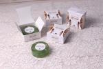 페르더마가 샤워 시 비누 마사지로 다이어트 효과를 낼 수 있는 비누 이집션 다이어트 비누를 출시했다.