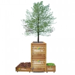 가든프로젝트는 도시농업·도시 숲·빗물 이용해 회색도시를 녹색도시로 재생시키고 있다.