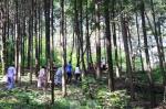 명문요양병원 김동석 원장과 암 환우들이 편백나무 숲에서 풍욕을 즐기고 있다.