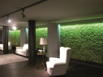 모스월은 오피스 및 다양한 상업 공간에서 좋은 반향을 일으키며 새로운 그린 인테리어 스타일을 창조하고 있다.