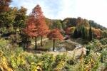 10월 3일부터 26일까지 한택식물원에서 들국화·단풍페스티벌이 열린다.
