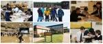 그리스도의 레지오 수도회에서 2015년 겨울 방학을 맞아 미국 현지 겨울 캠프 프로그램을 진행한다.