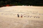 베가분도는 도이창 커피농장을 체험할 수 있는 AAA도이창 커피팜 투어를 출시했다.