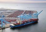 현대상선 컨테이너선 현대 싱가포르호가 미국 LA에 위치한 CUT에 기항하고 있다.