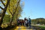 노란 은행잎을 날리며 자연을 느끼는 청소년여행문화학교 참가자들 (사진제공: 한국의길과문화)